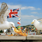 The Great British Seaside